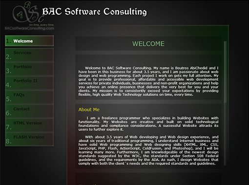 Dynamic Flash Website of BAC Software Consulting.